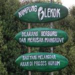 Cara Pemkab Tarik Wisatawan ke Kampung Blekok