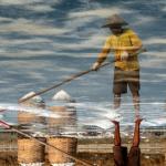 PT Garam Akan Revitalisasi Lahan di Gresik
