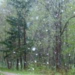 Hujan Es Rusak Puluhan Rumah di Bojonegoro