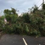 Angin Kencang Kembali Melanda Bangkalan