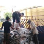 DKPP Probolinggo Tegaskan Tidak Ada Kelangkaan Pupuk