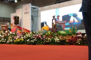 Apkasi Ucapkan Selamat ke Jokowi di Otonomi Expo 2019