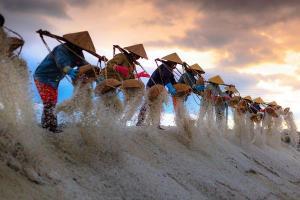 Petani Gelar Aksi Tabur Garam di Sumenep