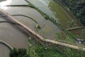 Konsep Desa Wisata Kampung Flory Cocok untuk Jatim