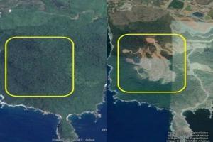 Walhi Jatim Ingatkan Ancaman Bencana di Selatan Jawa