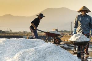 Petani Garam Terpukul Kebijakan Impor
