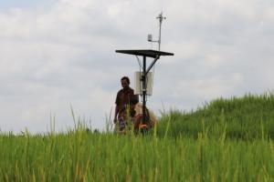 Genjot Produksi, Petani Daerah Tertinggal Terapkan 'Smart Farming'
