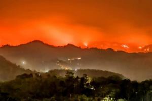 Api Gunung Argopuro Belum Padam, Jalur Pendakian Ditutup