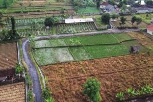 Bantuan Jalan Ditjen PDT Angkat Ekonomi Daerah Tertinggal
