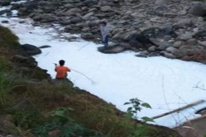 Pabrik Kayu Disidak terkait Pencemaran Sungai Arjasa