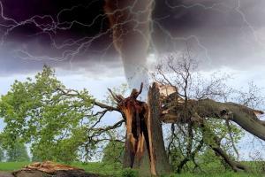 Angin Kencang Hantam 4 Desa di Mojokerto