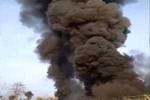 Ribuan Ayam Terpanggang dalam Kebakaran di Pasuruan