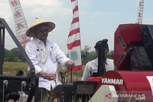 Mentan: Stok Bawang Putih Mencukupi Hingga 3 Bulan Kedepan