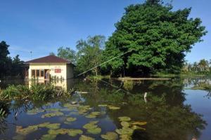 Banjir Rob Melanda Pesisir Pantai Selatan Malang