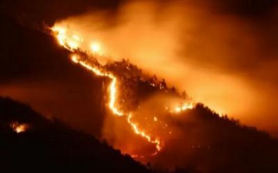Lereng Gunung Lawu Kebakaran Lagi