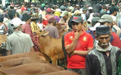 Cegah Penyebaran Covid-19, Pemkot Probolinggo Tutup Pasar Sapi di Wonoasih