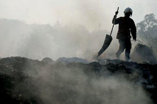 Kebakaran Ludeskan 157 Hektare Lahan di Mojokerto