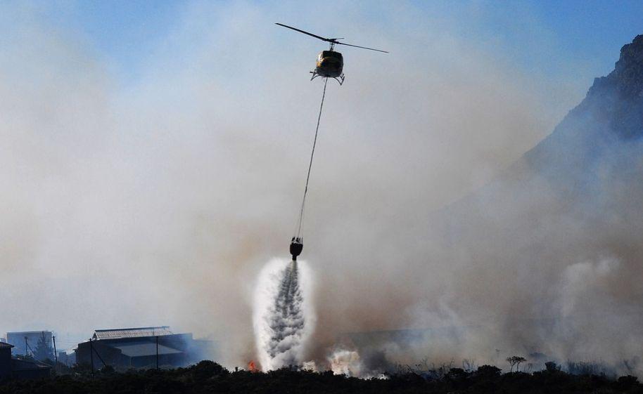 Ekosistem Gunung Arjuno Terancam, BNPB Diminta Turun Tangan